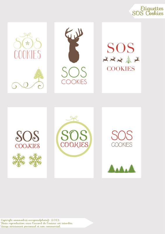 SOS cookies odraiscrapandphoto.fr