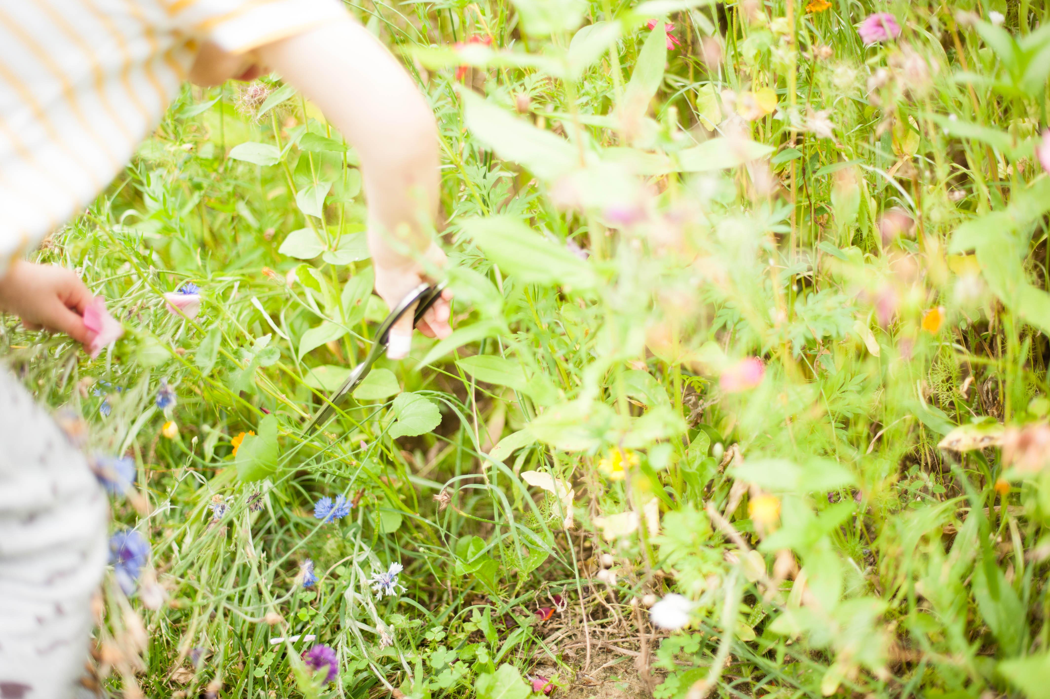 Montessori et nous – notre approche montessorienne