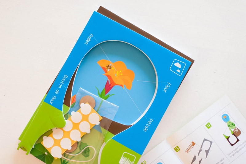 chouette box, botanique, jeu de fleur, inspiration montessori