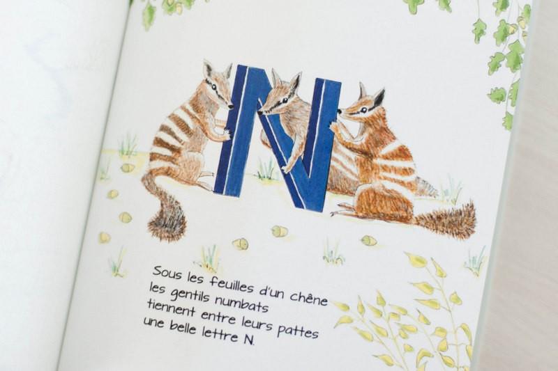 zebra book, Louis, odrai,