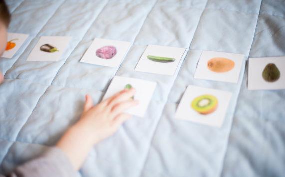 Les cartes de nomenclature – pédagogie Montessori