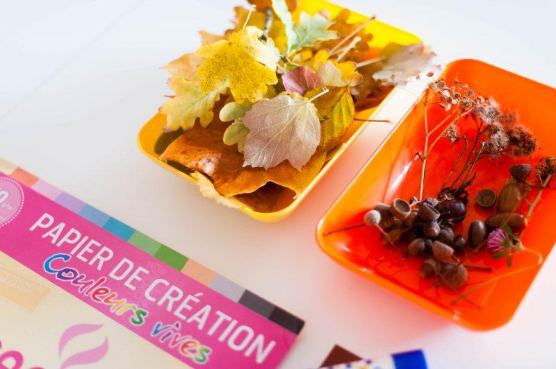 Activités automne_odrai-scrapandphoto.fr