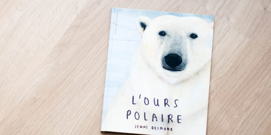 'ours polaire_odrai-scrapandphoto.fr