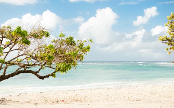 Voyage en Guadeloupe en famille
